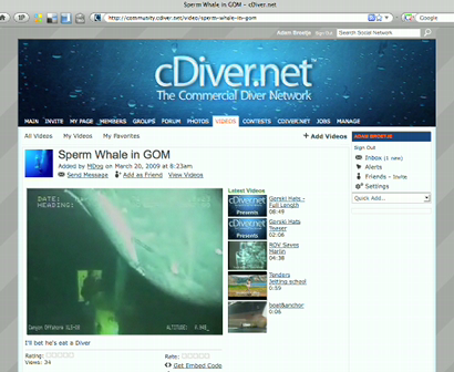 Share cDiver.net videos/pictures on Facebook