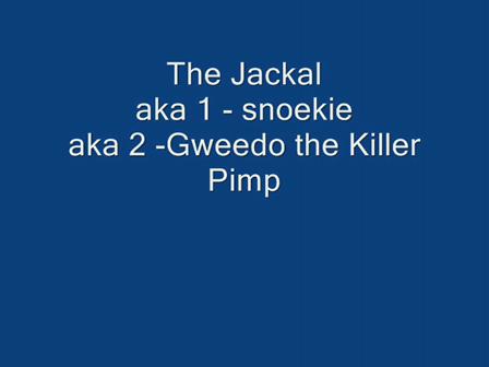 The Jackal at J-Bay