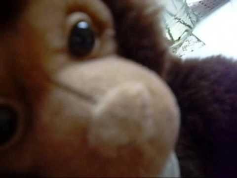 Dammit Monkey - Ep.1 The Monkey Trials