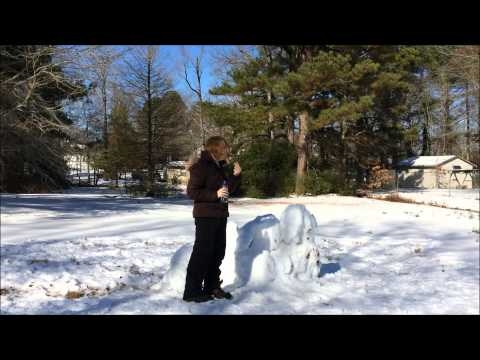 GMM Cockatrice Snow Sculpture! (With thank you for Rhett & Link!!)
