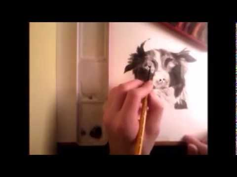 Dog-Speed Drawing/Painting