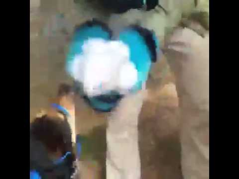 video charlotte furries