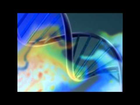Language of Light -DNA Activation Now