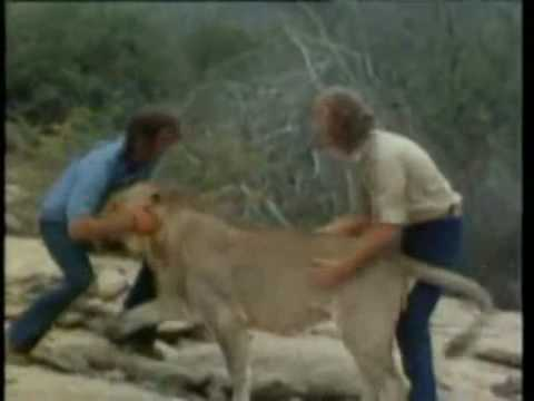 Christian The Lion,The Reunion