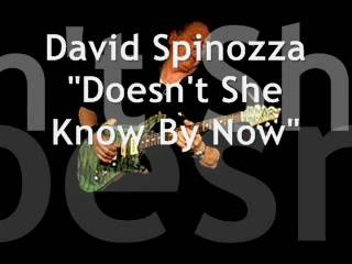 "David Spinozza ""Doesn't She Know By Now"""