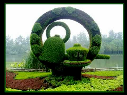 58655-CUR_23.Sculptures_plantes.avi