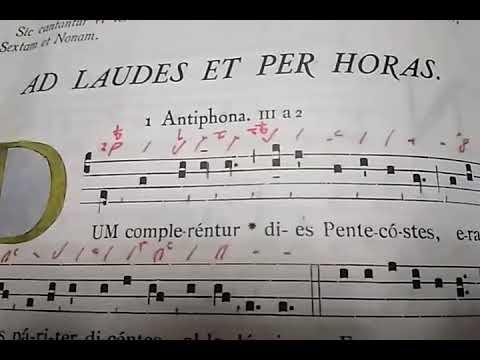 In festo Pentecostes
