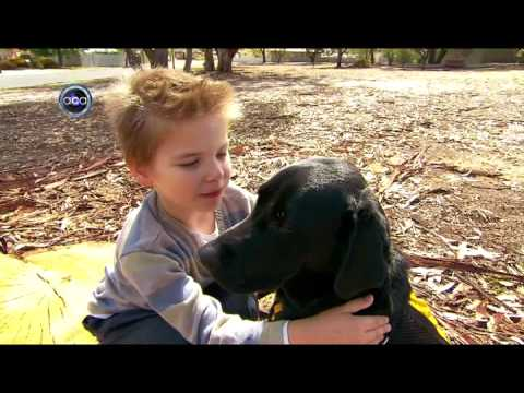 Autism Assistance Dogs - Channel 9 Newsclip