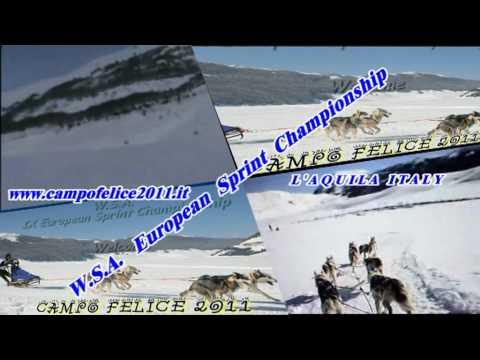 CAMPO FELICE AQ W.S.A. SLEDDOG