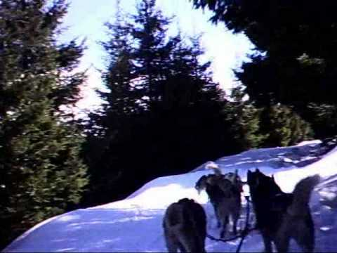 VALMARON  NEW CENTER  SLEDDOG ITALIA BY ALBERONI