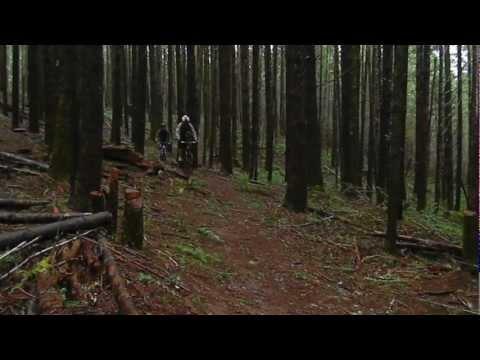 Mountain Lions (CGHS Mountain Bike Club)
