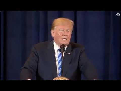 Trump Bings a Turbine