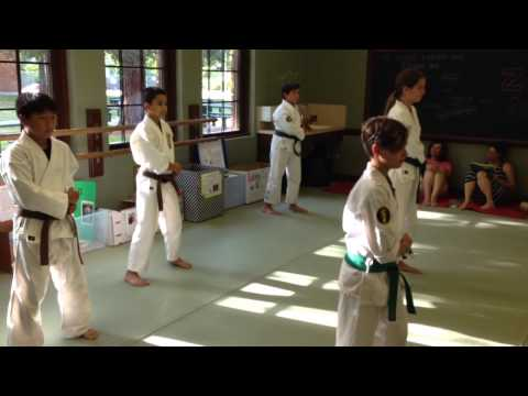 Emil's Isshinryu Black-Belt Challenge at Zen Martial Arts Sacramento