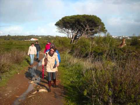 SerCascais na Rota da Púrpura