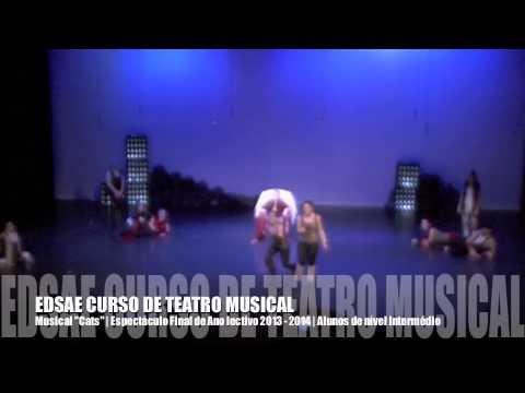 EDSAE | Musical Cats 2014 | Teatro Musical