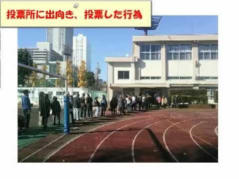 2012年衆議院選挙 不正選挙不正開票の実態4/4