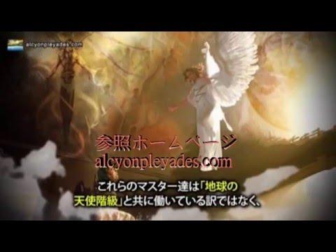 虫・鳥・天使?