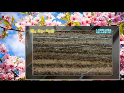 NHKスペシャル 2015年11月8日 151108 【アジア巨大遺跡 第4集 縄文 奇跡の大集落】