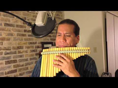 Abba - The Winner Take it All - Panflute - Eduardo Garcia
