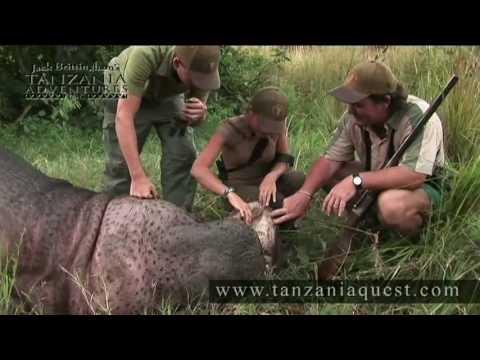 Hippo Hunt