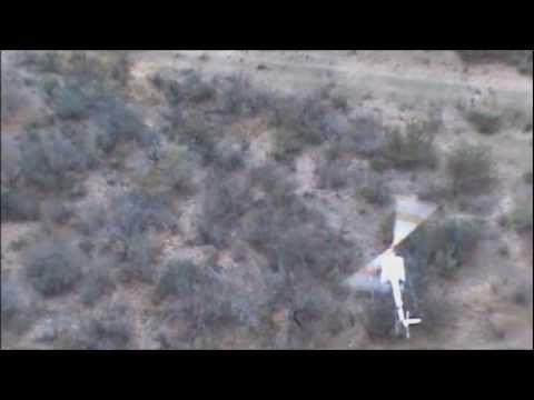 Helicopter Deer Capture