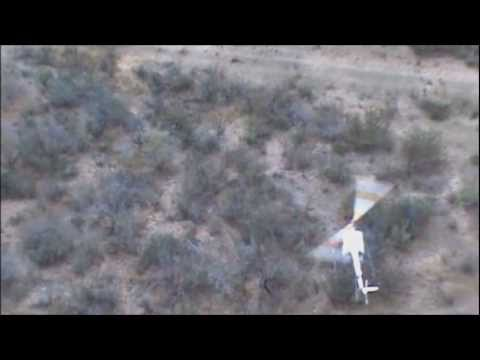 Helicopter Deer Capture
