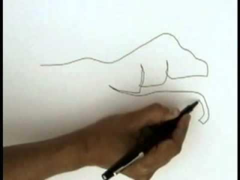 Blind Contour Drawing Tutorial