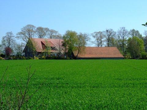 Mai Larsen Green Green Grass Of Home