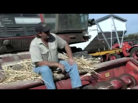 This Old Farm (Official Music Video) Tommy Lee Moffat