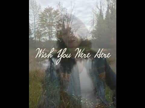 Wish You Were Here video by Cindy Larson