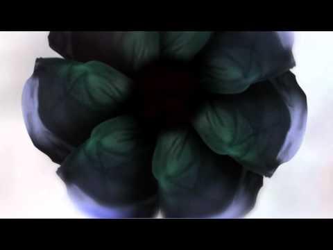 Dynamic Bloom by Nick Knight