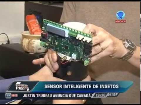 Sensor inteligente de insetos