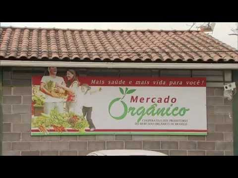 Número de agricultores orgânicos cresceu 50% em um ano