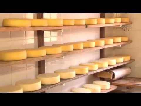 Queijo produzido na Serra da Canastra está entre os melhores do país