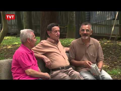 Previdência Social no Brasil completa 93 anos