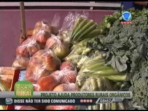 Projeto ajuda produtores rurais orgânicos