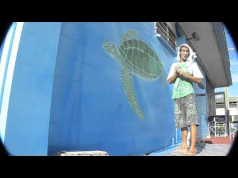 Cooly Turtle Mural