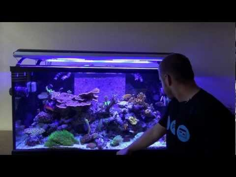 Aquapparel TV Episode 4: Jason's 120 Gallon Reef Tank Tour - Part 1