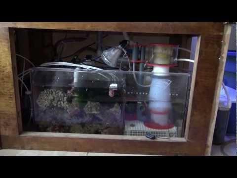 Aquapparel TV Episode 4: Jason's 120 Gallon Reef Tank Tour - Part 2