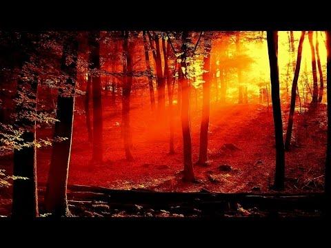 "VIVALDI ""The Four Seasons"" -  Autumn"