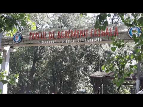Stuful la intrare in parcul Crihala