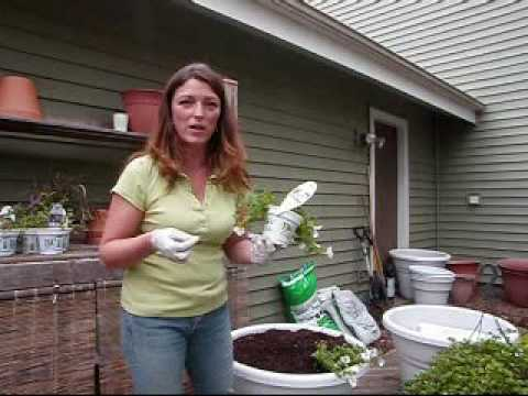 """Planting A """"Greener"""" Water Saving Container Garden - Save Money & Water!"""