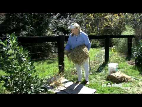 Create a New Garden Bed Without Digging