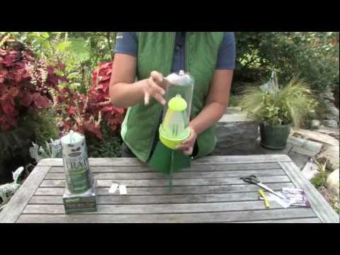 How to assemble RESCUE! Stink Bug Trap