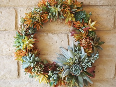 Quick and Easy Succulent Wreath