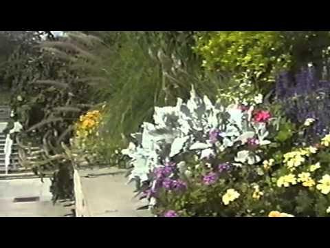 Royal Gardens Of Toronto