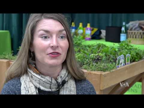 Foodscaping Offers Chance to Grow Food Amid Flowers, Shrubs