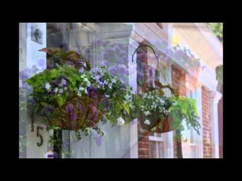 Flower Boxes Of Nantucket