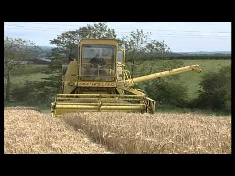 52 Acres Of  Barley