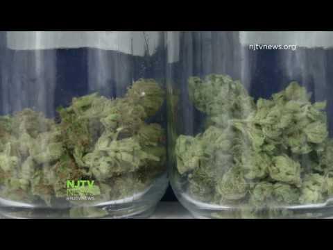 Legalizing Recreational Marijuana could make New Jersey Billions!